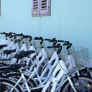 location de vélo en bord de mer